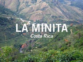 la-minita-button-1.jpg