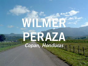 wilmer-peraza-button-1.jpg